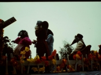 Lions-Carnival-1970s-12